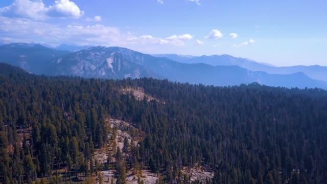 luftaufnahme des sequoia national park - staatspark stock-videos und b-roll-filmmaterial