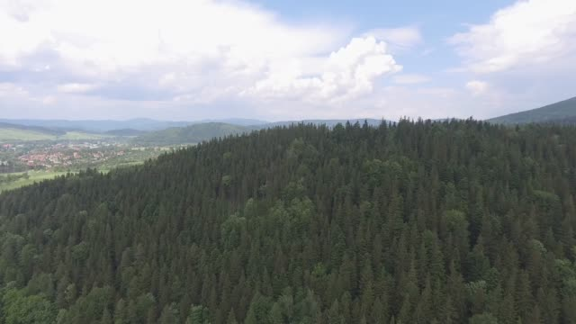 Aerial view of the summer time in mountains near Czarna Gora mountain in Poland. Pine tree forest and clouds over blue sky. View from above. video