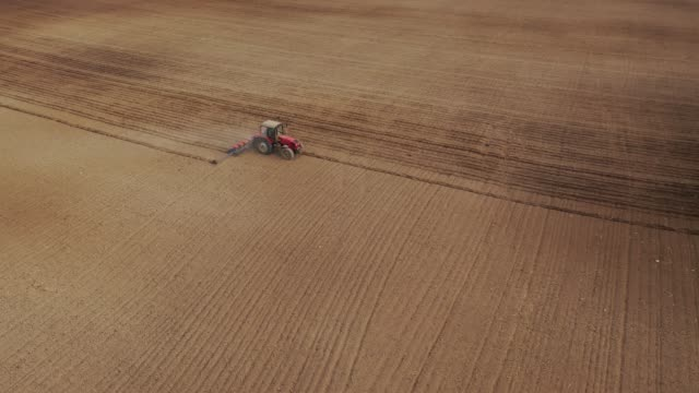 Aerial view of the tractor in the field, agricultural field work, sowing work in the field at sunset Aerial view of the tractor in the field, agricultural field work, sowing work in the field at sunset harrow agricultural equipment stock videos & royalty-free footage