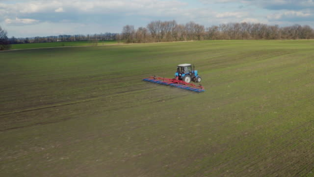 Aerial view of the tractor, works the field early in the spring on a sunny day. The first shoots of wheat are visible, the blue sky with clouds video