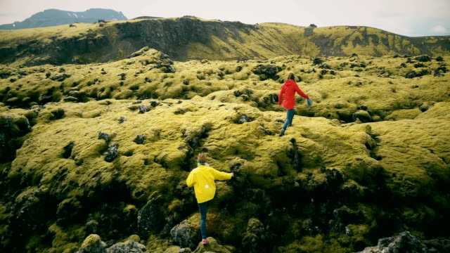 Aerial view of the two woman walking, hiking on the lava field in Iceland. Tourists falls down on the soft moss video