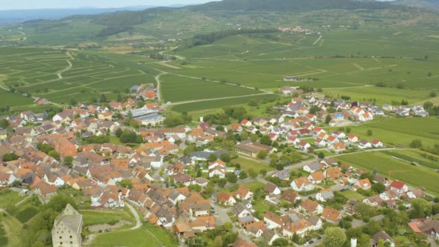 aerial view of the village burkheim at the kaiserstuhl in germany - barocco video stock e b–roll