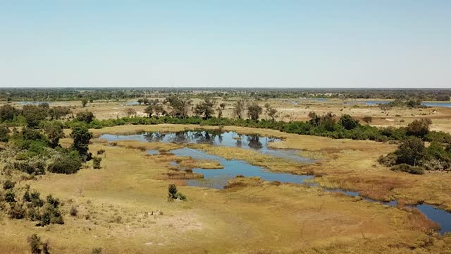 Aerial View of the Waterways and Lagoons Okavango Delta in Botswana, Africa Aerial View of the Waterways and Lagoons Okavango Delta in Botswana, Africa. Dron Shot waterhole stock videos & royalty-free footage