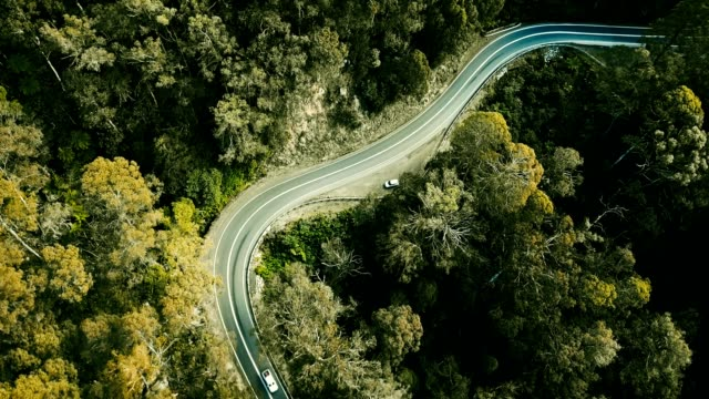 aerial view of the winding road in australia video