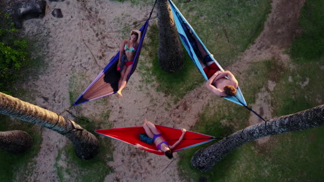 Aerial view of three young adults relaxing in hammocks among palm trees video