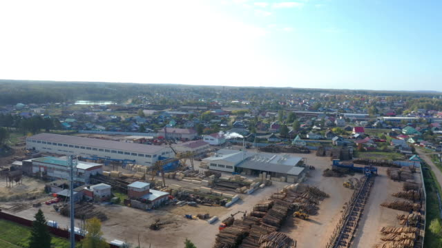 Aerial view of timber in storage for processing at sawmill plant for wood production also known as timber mill or lumber yard showing cut trees logs and factory. Automated log sorting at sawmill - video