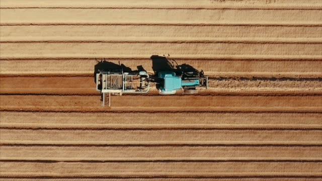 Aerial view of tractor plowing at potato field Video series shot with drone of tractors plowing and sowing potato field in the middle size farm during early spring. sowing stock videos & royalty-free footage
