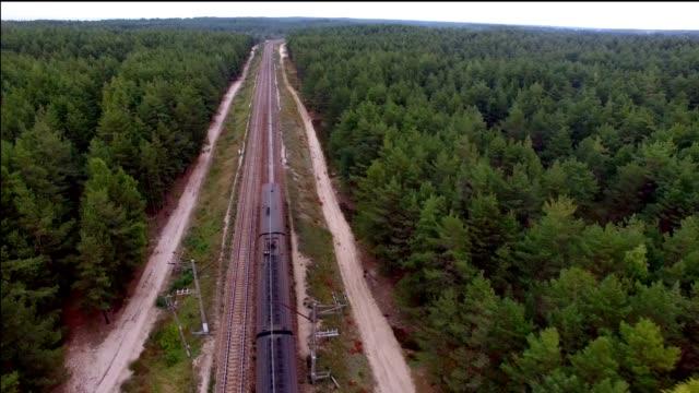 vídeos de stock e filmes b-roll de aerial view of train on railway in the forest - letónia