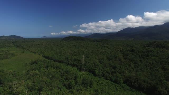 Aerial View of Tropical Coastline video