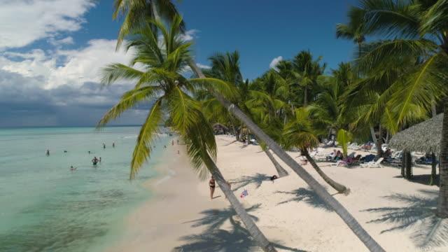 flygfoto över tropisk ö stranden i punta cana, dominikanska republiken. sommarsemester - indiska oceanen bildbanksvideor och videomaterial från bakom kulisserna