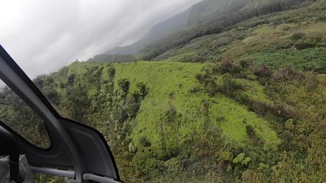 vídeos de stock, filmes e b-roll de vista aérea da paisagem tropical do helicóptero - helicóptero