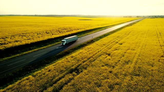 aerial view of truck on  highway  near the yellow field of rapeseed - przewóz ładunku filmów i materiałów b-roll