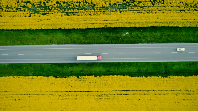 Aerial view of truck on  highway  near the yellow field of rapeseed Aerial view of truck on highway in the countryside near the yellow field of rapeseed, Ukraine semi truck stock videos & royalty-free footage
