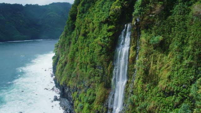 flygfoto över vattenfall i hawaii - kustlinje bildbanksvideor och videomaterial från bakom kulisserna