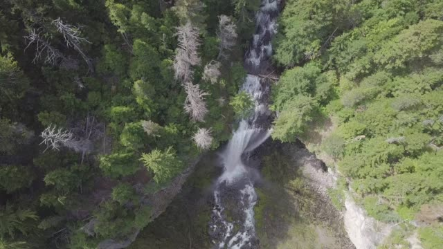 4K aerial view of waterfall in Mount Hood National forest, Oregon, USA. Shooting from the drone fly over the forest and natural stream from waterfall. Beautiful sunny day Landscape background concept