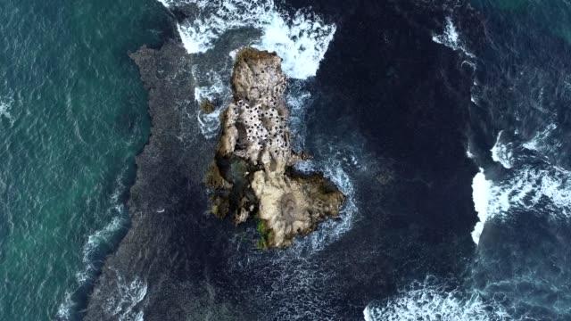 aerial view of western australian rocky ocean outcrop - western australia stock videos & royalty-free footage