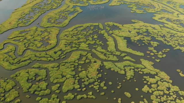 Aerial View of Wetland Izmir, Turkey marsh stock videos & royalty-free footage