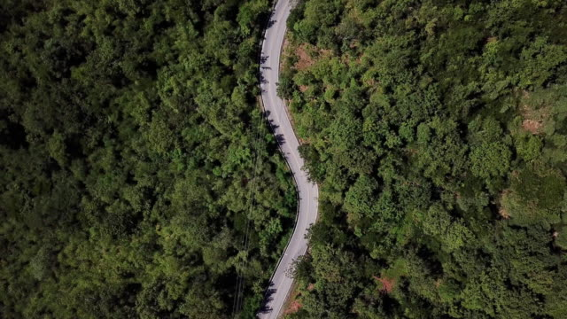 aerial view of winding road in the forest and car driving , safety driving concept - viaggio su strada video stock e b–roll
