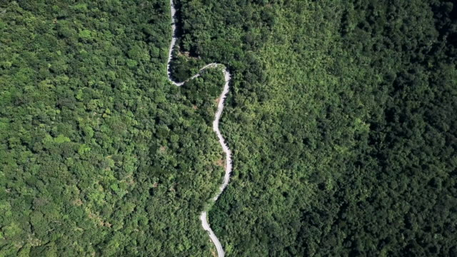 Aerial view of Winding road in the forest and car driving , Safety Driving concept Aerial view of Winding road in the forest and car driving , Safety Driving concept 4K(UHD) curve stock videos & royalty-free footage