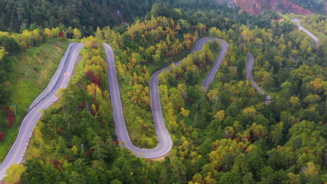 aerial view of winding road on mountain in autumn - strada tortuosa video stock e b–roll