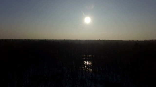 Aerial view of winter defoliated forest. Snow laying on the ground, sun reflecting in the pond video