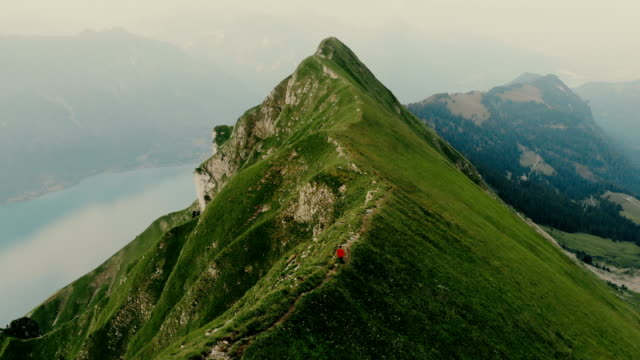 aerial view of woman running on the mountain ridge in swiss alps - trekking video stock e b–roll