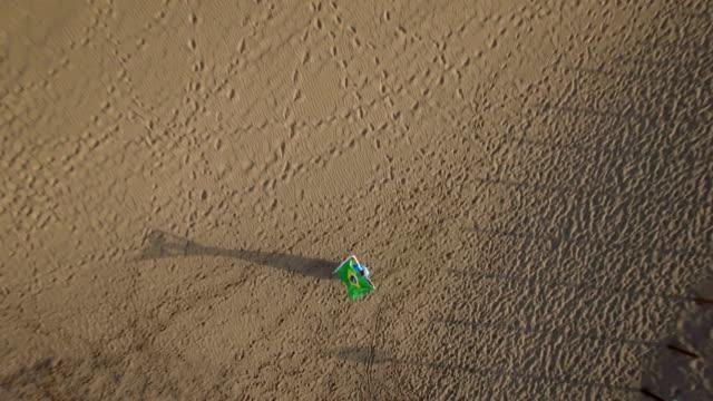 flygfoto över kvinnan med brasilianska flaggan och naturen scen - brasilien flagga bildbanksvideor och videomaterial från bakom kulisserna