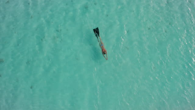 Aerial view of women in bright bikini floating with swim fins  in a clear blue sea water of a desert island Aerial view of women in bright bikini floating with swim fins  in a clear blue sea water of a desert island. Concept of  tourism, travel, honeymoon, holiday and relaxation. propeller airplane stock videos & royalty-free footage