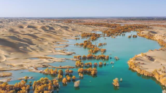stockvideo's en b-roll-footage met luchtfoto xinjiang - geologie