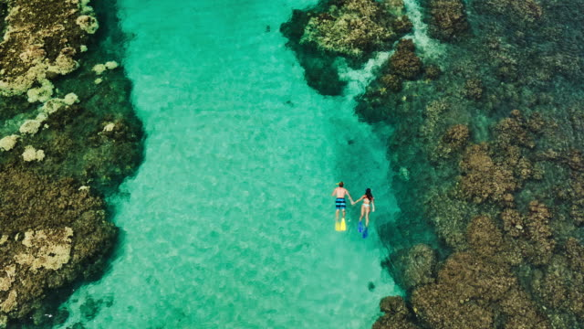 Aerial view of young couple snorkeling in tropical blue ocean