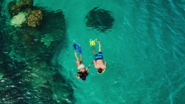 vídeos de stock e filmes b-roll de aerial view of young couple snorkeling in tropical blue ocean - mergulhar