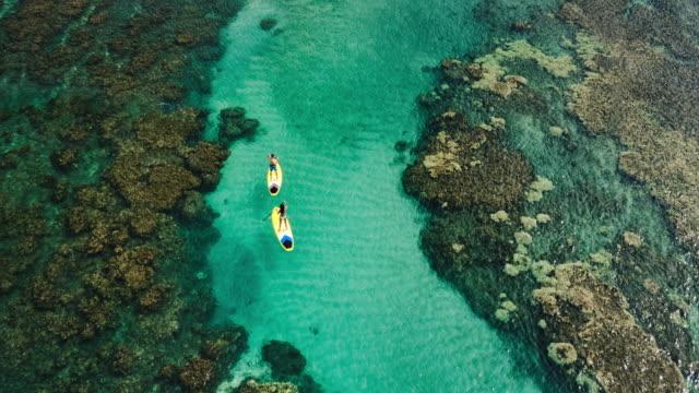 stockvideo's en b-roll-footage met luchtfoto van jong koppel opstaan peddelen - paddle