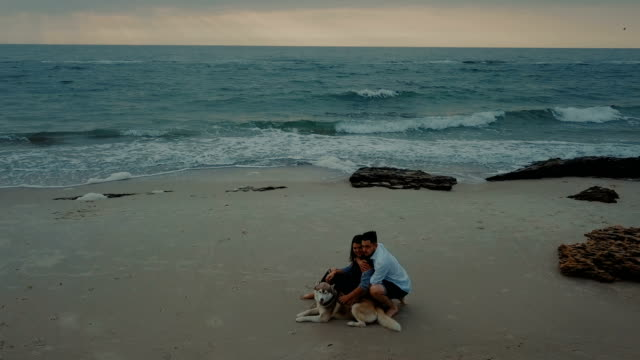 aerial view of young happy couple walking on beach with husky dog - cane husky video stock e b–roll