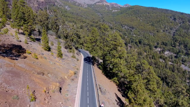 Aerial view on road in East End of Teide National Park in Tenerife video