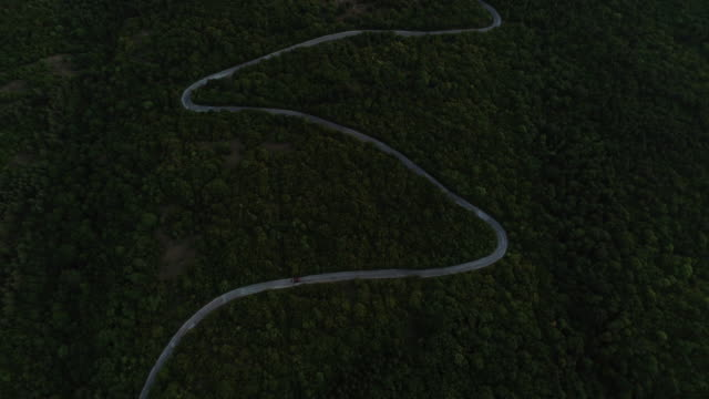 Aerial view on road in the forest in the dark Aerial view on the country road curve through the forest country road stock videos & royalty-free footage