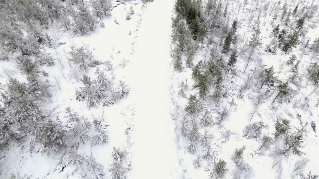 Aerial view over a road video