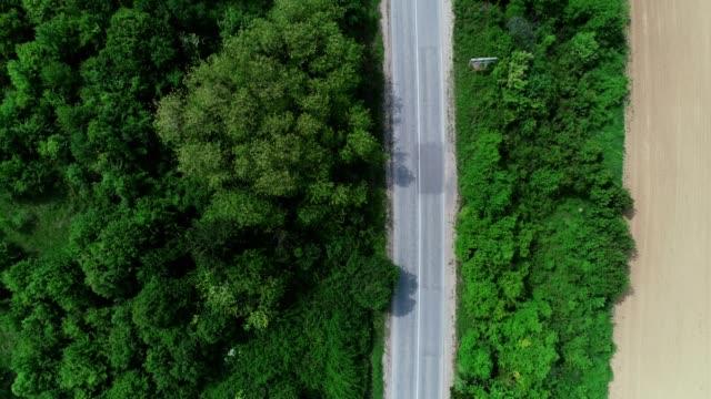 vídeos de stock e filmes b-roll de aerial view over a straight road through the forest in springtime, directly above. - reto descrição física