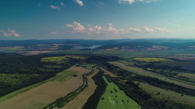 aerial view over agricultural fields, forest and dam. dalgopol, varna, bulgaria - bułgaria filmów i materiałów b-roll