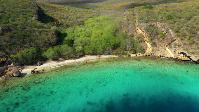 Aerial view over area Playa Hundu with coastline and turquoise water - Curaçao/Caribbean /Dutch Antilles Aerial over Curacao /Caribbean /Netherland Antilles curaçao stock videos & royalty-free footage
