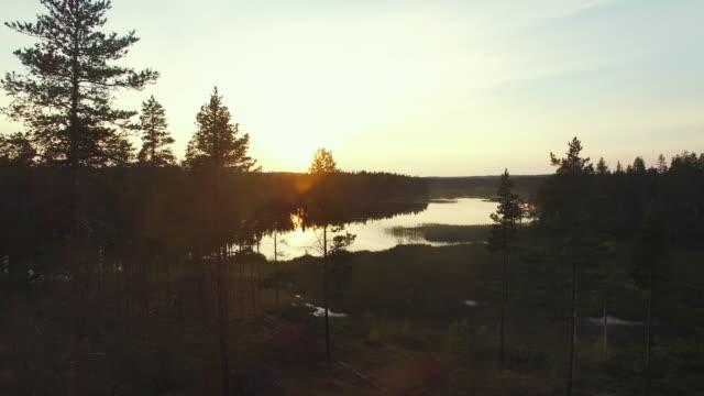 flygfoto över sjön vid soluppgång, dimma och träd. dimmig morgon i skogen. vacker natur bakgrund. svenska landskap - pine forest sweden bildbanksvideor och videomaterial från bakom kulisserna