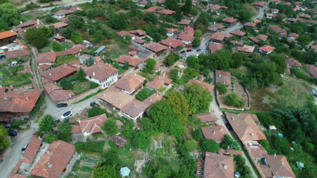 Aerial view over mountain village with green blossoming trees at sunrise with bright sunlight.