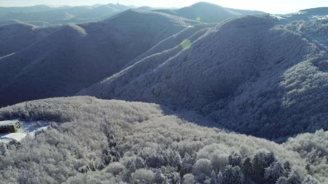 vídeos de stock e filmes b-roll de aerial view over snowcapped pine forest, deep snow cover, white hatted woodlands, panoramic view, different perspectives - passagem de ano