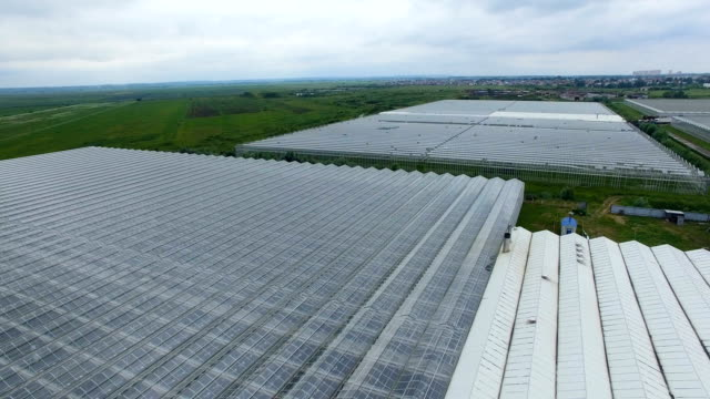 Aerial view over the greenhouses. 4K. video