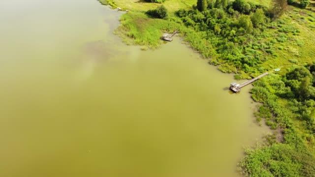 Aerial view, owergrown lake shore