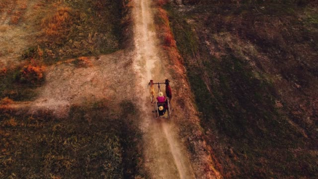 aerial view ox cart at sunset - cambogia video stock e b–roll