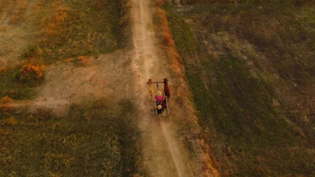 Aerial View Ox cart at sunset