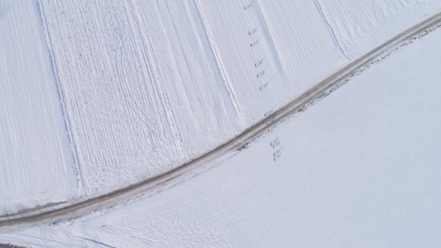 WS Aerial view roe deer running through snow covered rural field