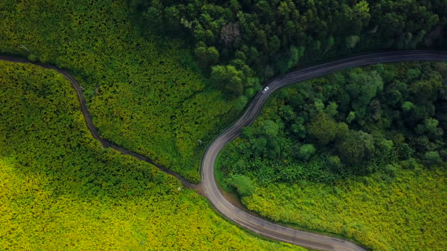Aerial view shot Beautiful road on the mountain in Mae Hong Son, Thailand video
