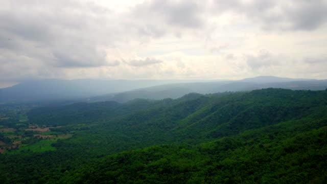 Aerial View shot of rainforest in Thailand video