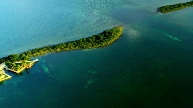Aerial view small sub tropical Island, USA video